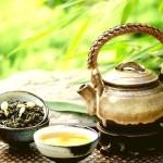 Chá verde: renda-se aos seus encantos!