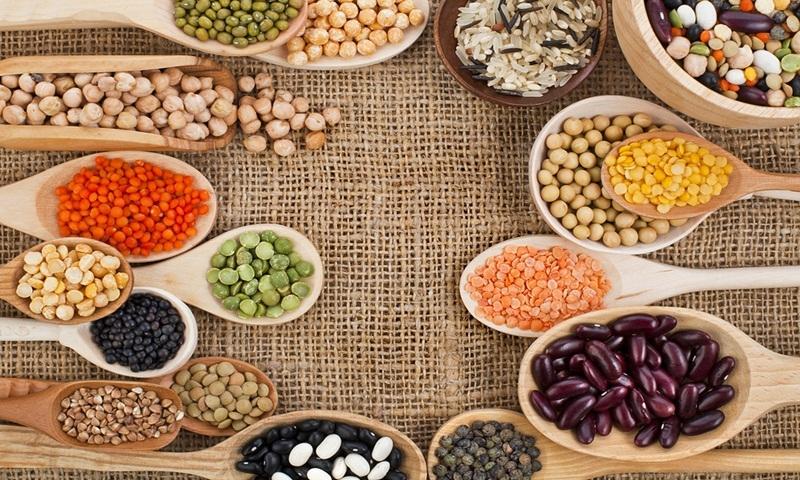 proteinas-vegetais-vegetariano-vegano